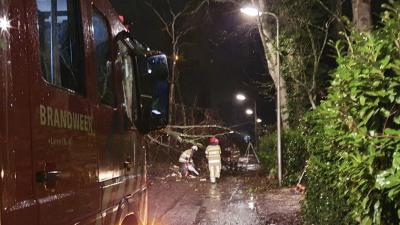 Code geel: Storm Bella raast: schade op Noolseweg