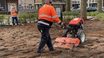 Nieuw plantsoen in aanleg bij carspot Bonte Paard